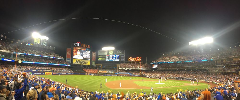 one-and-only-wild-card-panorama